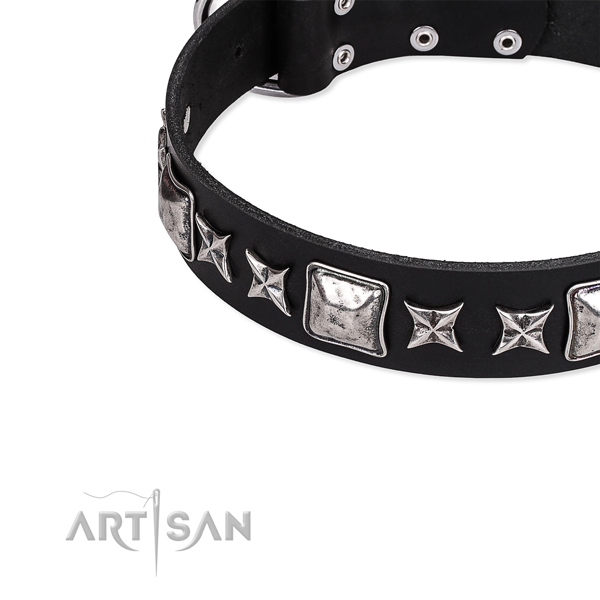 Everyday walking embellished dog collar of fine quality full grain leather