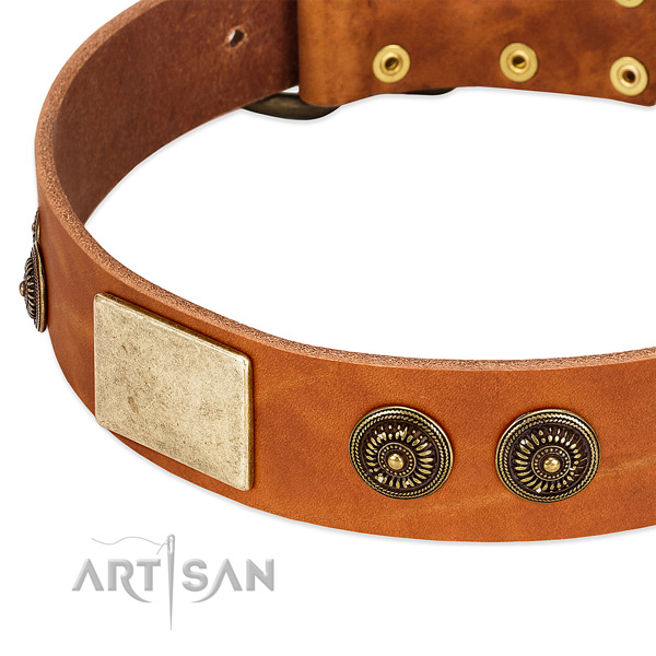Perfect fit dog collar created for your beautiful four-legged friend