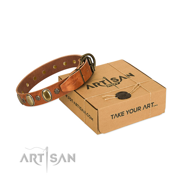 Handy use quality genuine leather dog collar with adornments