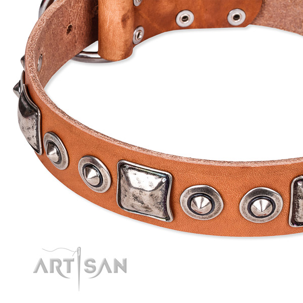 Best quality genuine leather dog collar made for your beautiful dog