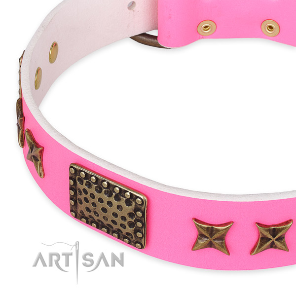 Full grain natural leather collar with reliable hardware for your impressive dog