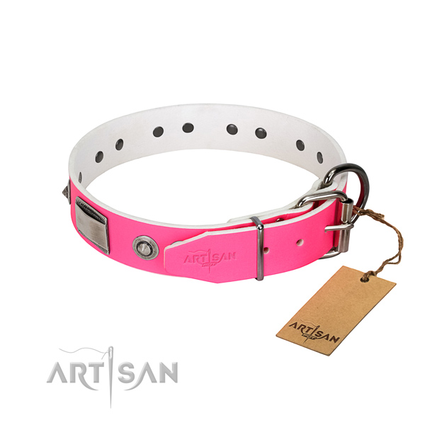 Top notch dog collar of full grain leather with embellishments