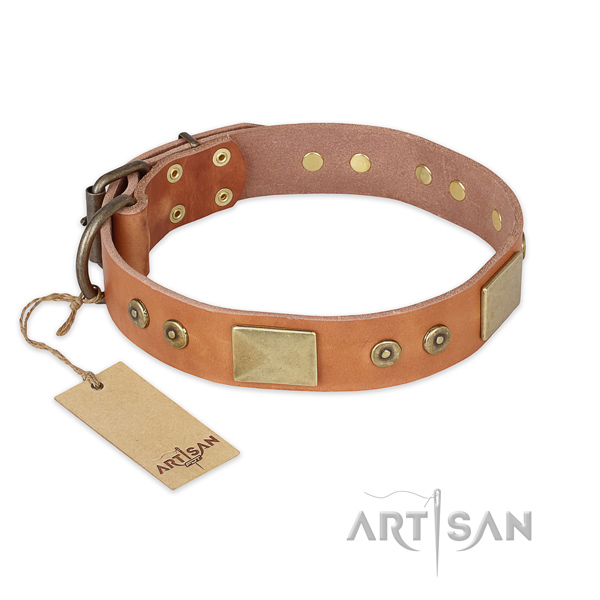 Unusual full grain genuine leather dog collar for basic training
