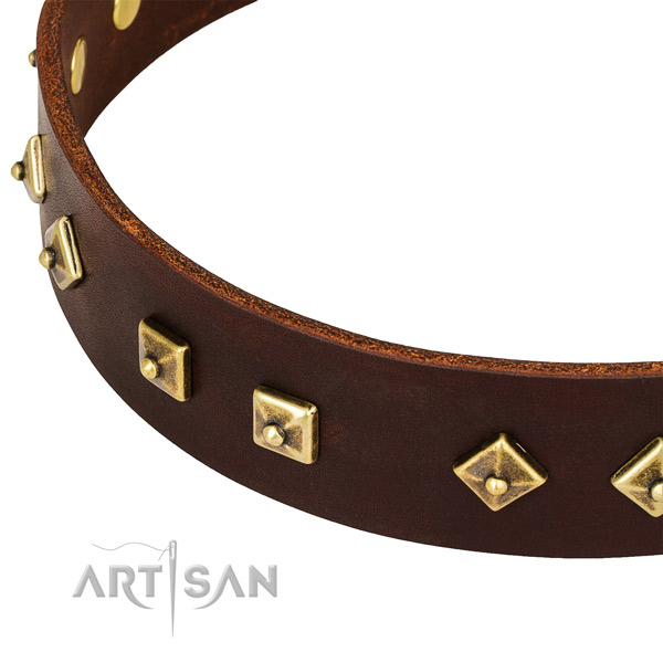 Unique genuine leather collar for your handsome pet