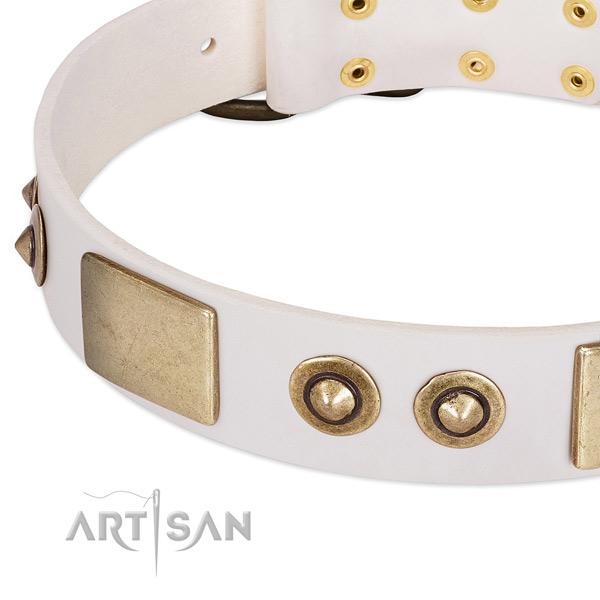 Rust-proof fittings on full grain natural leather dog collar for your pet