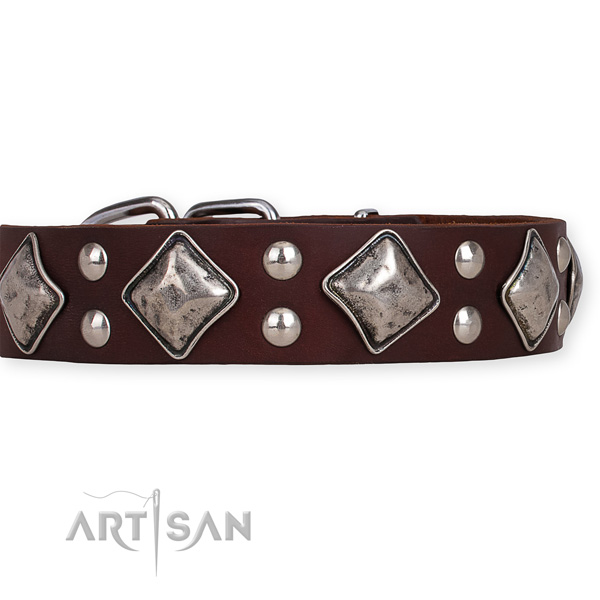 Genuine leather dog collar with stylish reliable decorations