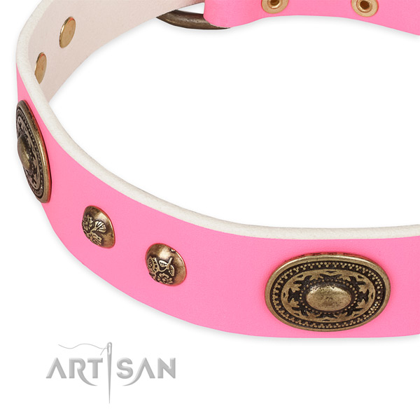 Studded full grain leather collar for your lovely pet