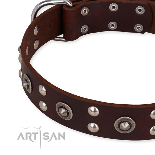 Full grain natural leather collar with rust resistant fittings for your lovely pet