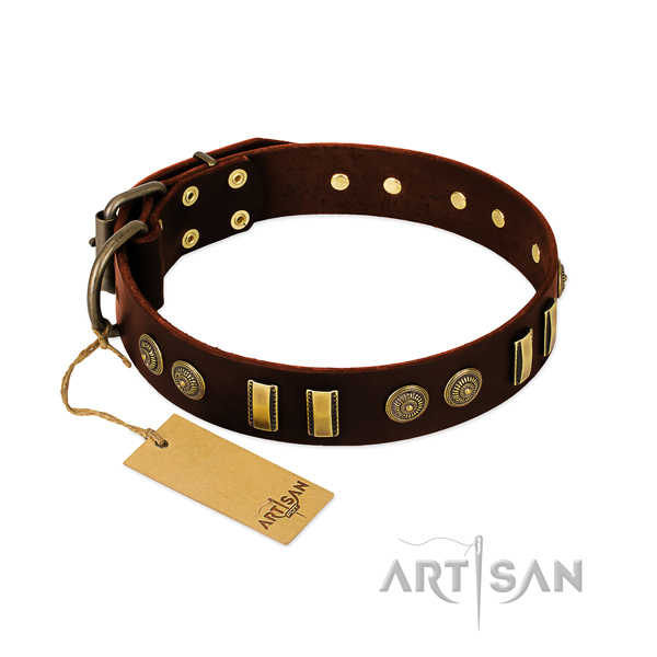 Corrosion proof hardware on leather dog collar for your dog