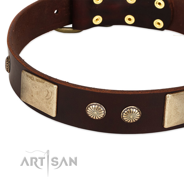 Rust resistant hardware on genuine leather dog collar for your pet