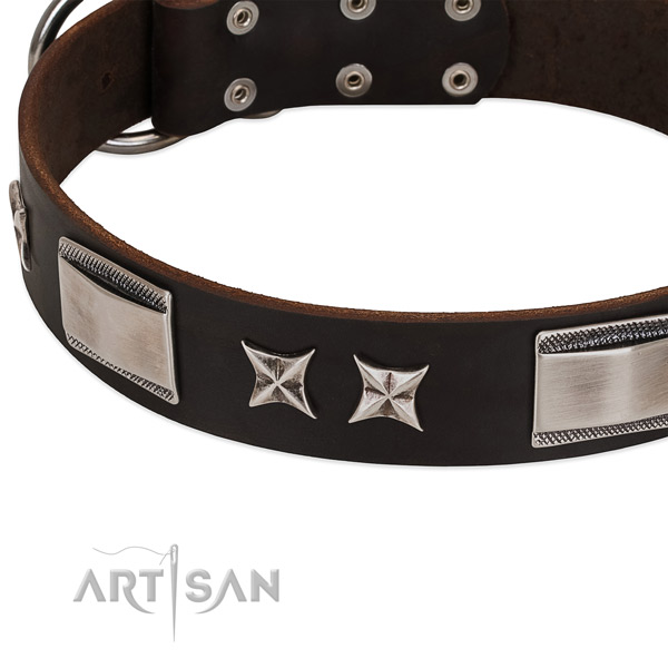 Impressive collar of full grain leather for your lovely pet