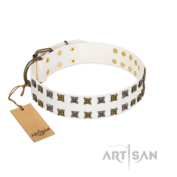 Natural leather collar with unique decorations for your doggie