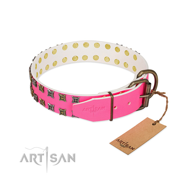 Natural leather collar with fashionable adornments for your pet