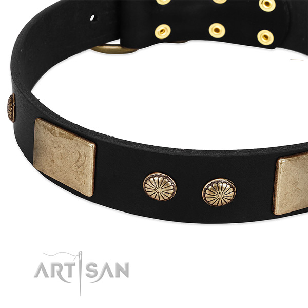 Genuine leather dog collar with adornments for easy wearing