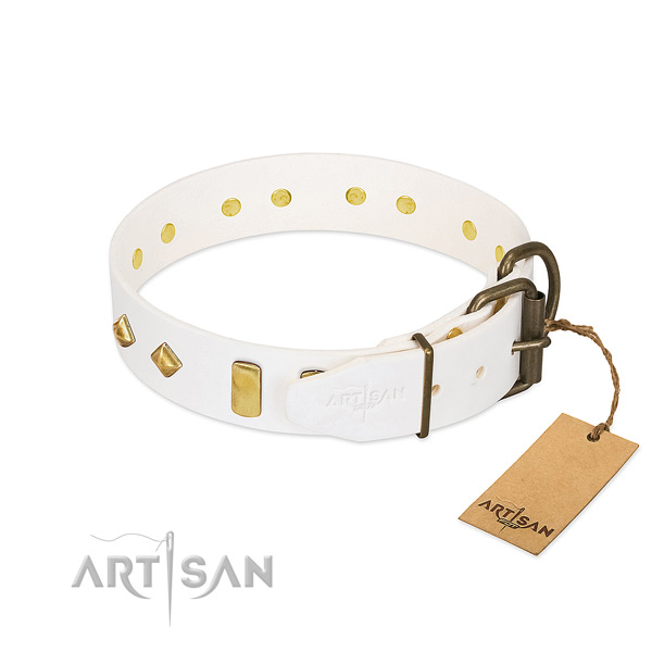 Top rate natural leather dog collar with rust-proof hardware