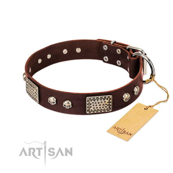 Adjustable leather dog collar for everyday walking your pet