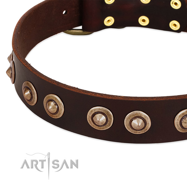 Corrosion proof buckle on full grain natural leather dog collar for your four-legged friend