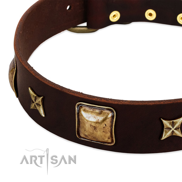 Reliable decorations on full grain leather dog collar for your doggie