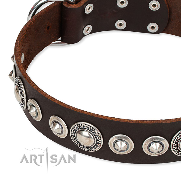 Comfy wearing studded dog collar of fine quality full grain leather