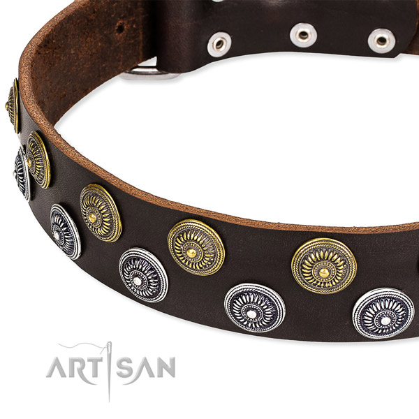 Basic training decorated dog collar of high quality full grain natural leather