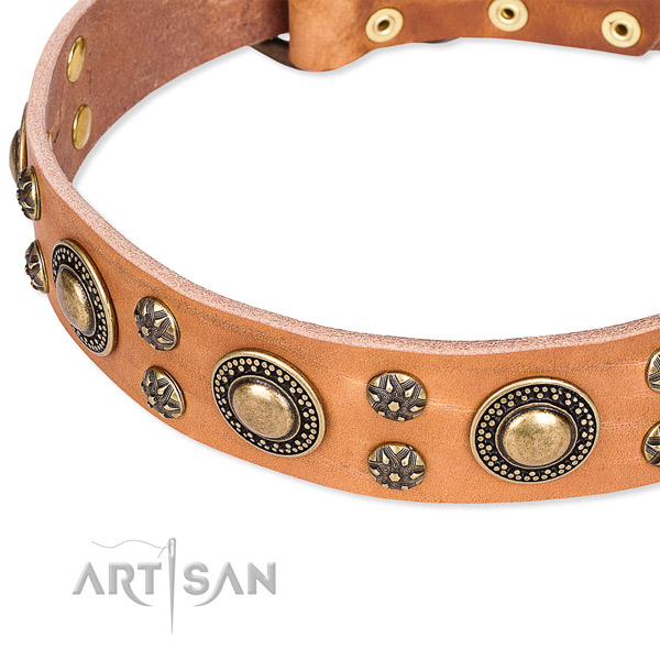 Easy wearing decorated dog collar of quality full grain natural leather