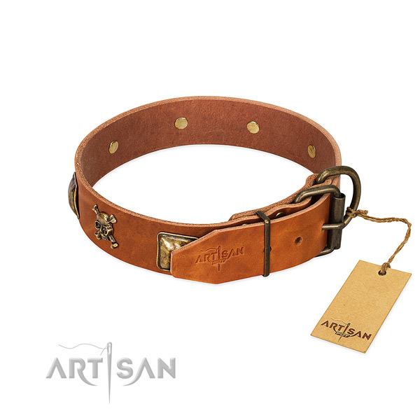 Significant natural leather dog collar with rust resistant decorations