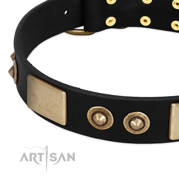 Durable D-ring on leather dog collar for your pet
