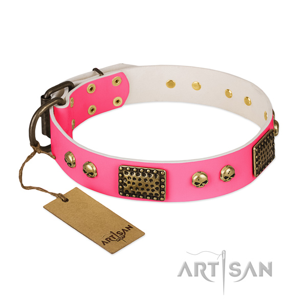 Adjustable full grain leather dog collar for walking your dog