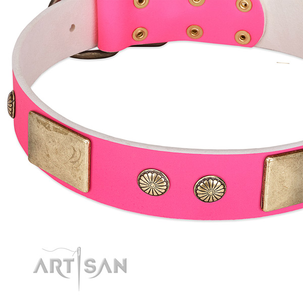 Rust resispinkt decorations on full grain natural leather dog collar for your canine