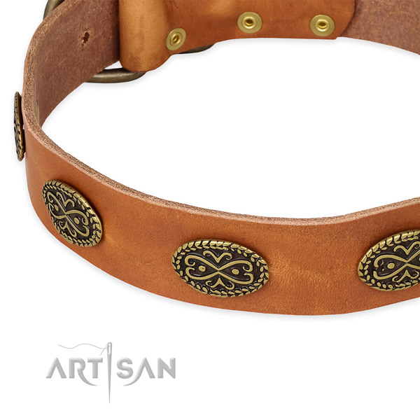 Comfortable leather collar for your beautiful four-legged friend