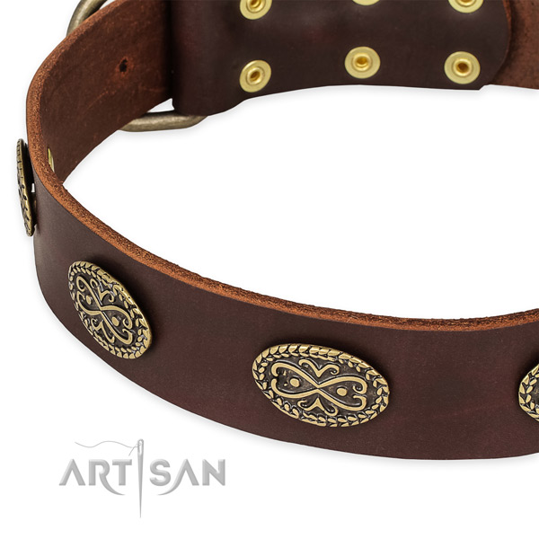 Unusual leather collar for your stylish canine