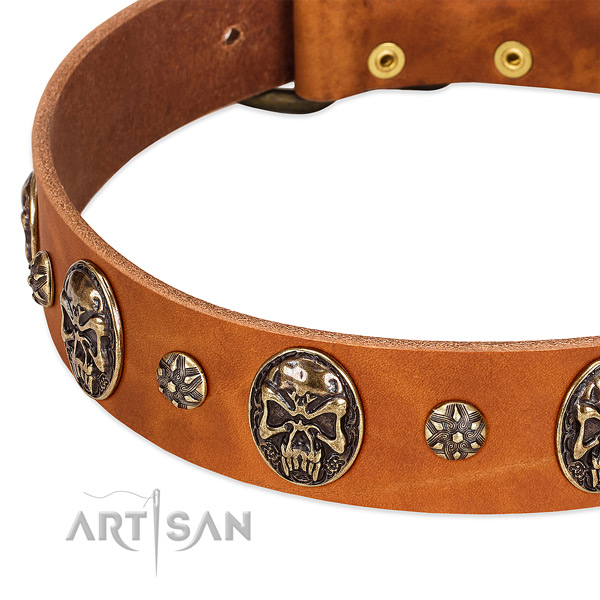 Corrosion resistant traditional buckle on full grain leather dog collar for your doggie