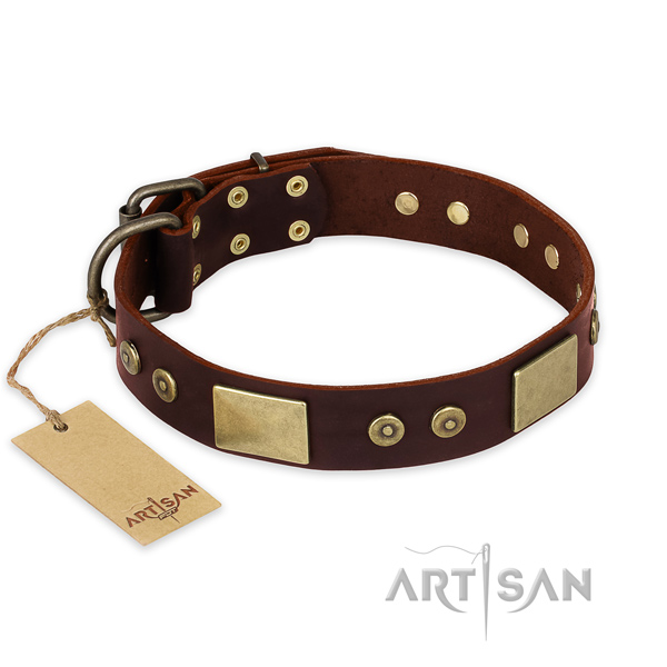 Incredible full grain genuine leather dog collar for walking