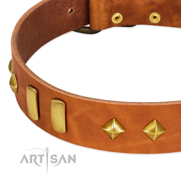 Everyday use natural leather dog collar with top notch decorations