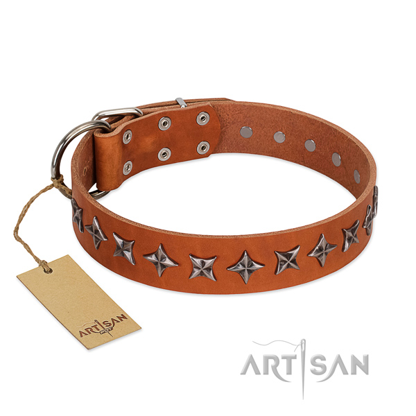 Daily use dog collar of reliable genuine leather with decorations
