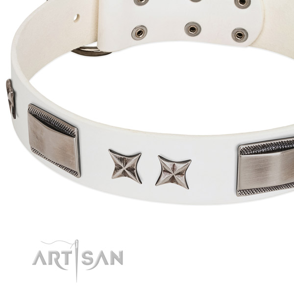 Top rate full grain natural leather dog collar with reliable hardware