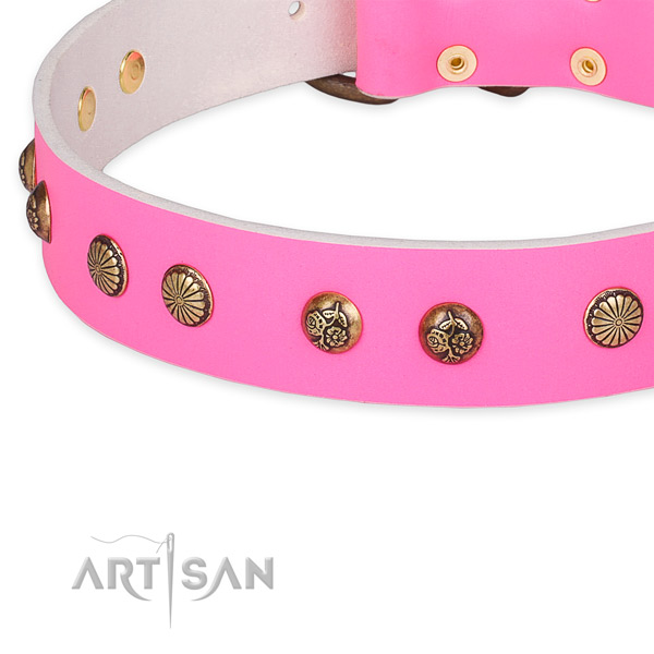 Full grain leather collar with reliable fittings for your attractive doggie