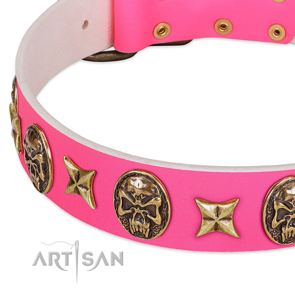 Leather dog collar with incredible adornments