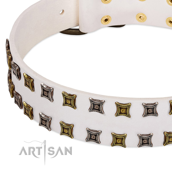 Full grain genuine leather dog collar with studs for your impressive pet