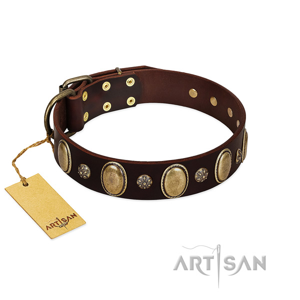 Comfy wearing reliable full grain leather dog collar with studs