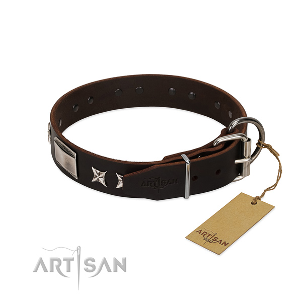 Amazing collar of full grain genuine leather for your stylish doggie