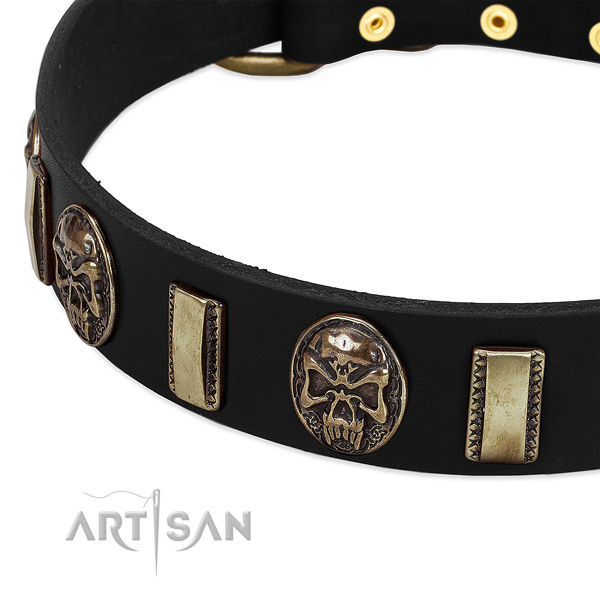 Reliable adornments on natural genuine leather dog collar for your canine