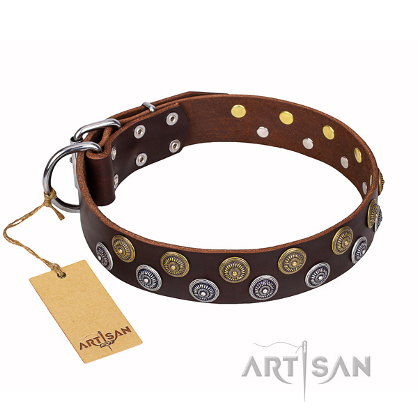Handy use dog collar of best quality natural leather with studs