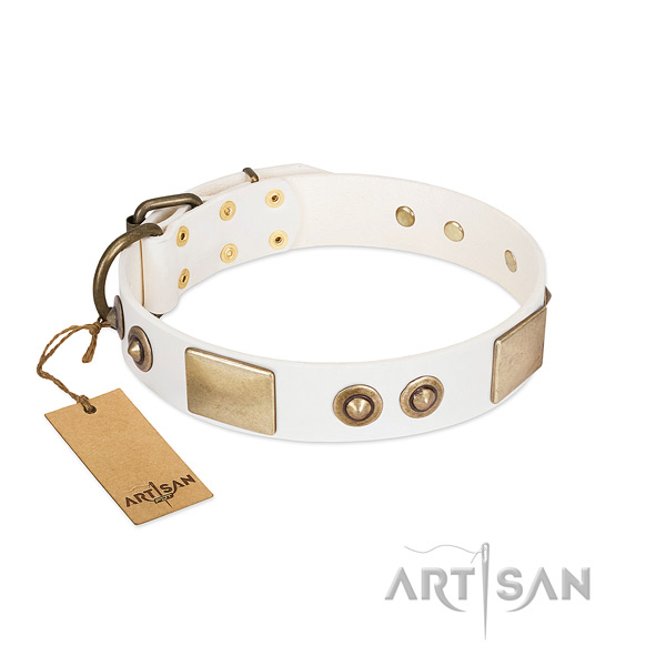 Corrosion proof adornments on genuine leather dog collar for your doggie
