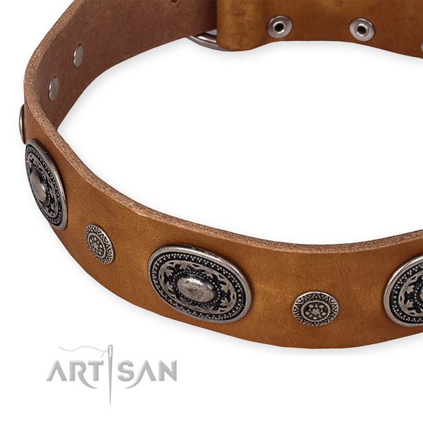 Reliable full grain leather dog collar created for your stylish doggie
