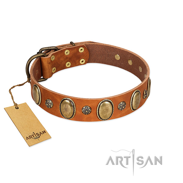 Everyday walking soft full grain genuine leather dog collar with studs