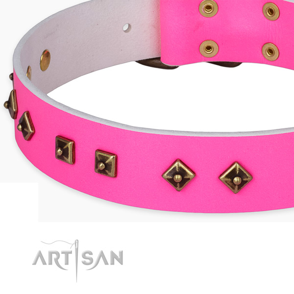 Extraordinary full grain natural leather collar for your attractive four-legged friend