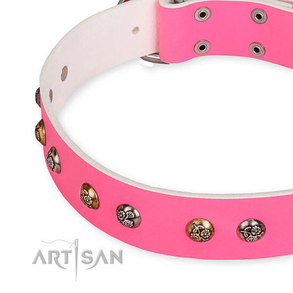 Genuine leather dog collar with trendy reliable decorations