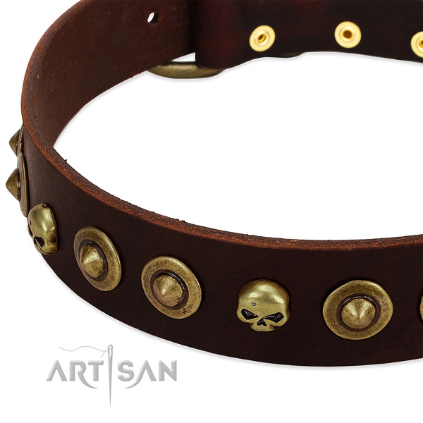 Unique embellishments on natural leather collar for your four-legged friend