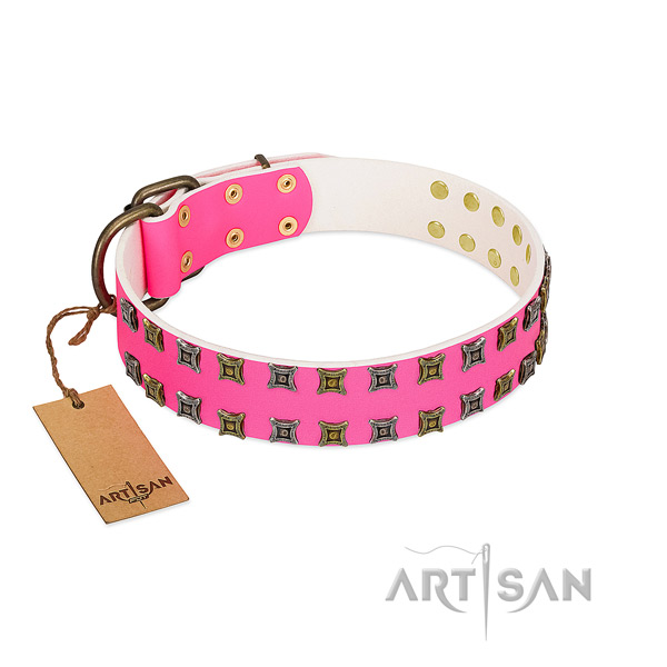 Genuine leather collar with remarkable embellishments for your canine